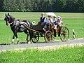 21te Rammenauer Schlossrundfahrt der Pferdegespanne (016).jpg