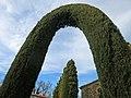 263 Cementiri de Perafita, tanca de xiprer a l'entrada.jpg
