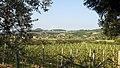 37022 Fumane VR, Italy - panoramio (1).jpg