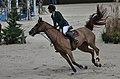 54eme CHI de Genève - 20141212 - Steve Guerdat et Albführen's Paille 5.jpg