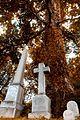6.19 - Hollywood Cemetery.jpg