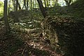 61-234-5006 Скелі Словацького кременець.jpg