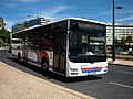 665 Vimeca - Flickr - antoniovera1.jpg