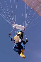 AFA The Bird chute