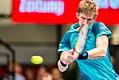 ATP Erste-Bank-Open 500 Vienna 2017.jpg