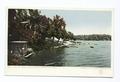 A Bit of Shore, Lake Calhoun, Minneapolis, Minn (NYPL b12647398-68050).tiff