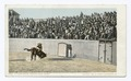 A Close Shave, Mexican Bull Fight (NYPL b12647398-62555).tiff