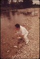 A LOCAL HEALTH OFFICER TAKING A WATER SAMPLE FROM THE FRIO RIVER NEAR LEAKEY, TEXAS, NEAR SAN ANTONIO - NARA - 554848.tif