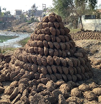 Dry dung fuel - A pile of dung cakes in the village Nihal Singh Wala of District Moga in Punjab