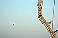 A ScanEagle unmanned aircraft system is retrieved on the amphibious transport dock ship USS San Antonio (LPD 17) during International Mine Countermeasures Exercise (IMCMEX) 13 in Bahrain May 16, 2013 130516-N-GZ984-006.jpg