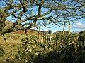 A surviving footpath gate - geograph.org.uk - 675133.jpg