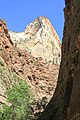 A view in Zion National Park.jpg