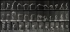 A woman placing a rug. Photogravure after Eadweard Muybridge Wellcome V0048713.jpg