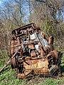 Abandoned car at the Salt Marsh (10804).jpg