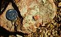 Acraman Ejecta Flinders Ranges.jpg