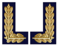 Admiral der NVA.png