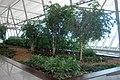 Aeropuerto Internacional de Carrasco - panoramio (4).jpg