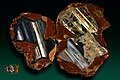 Agat Thunderegg x 2 - Richardson Ranch (Priday Ranch), Madras, Jefferson Co.jpg