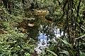 Aguas del Dantayaco que dan vida a las cascadas del fin del mundo - panoramio.jpg