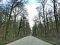 Ahlen, Germany - panoramio (33).jpg