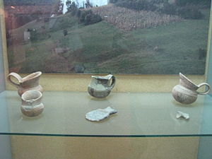 Coțofeni culture - Coţofeni culture vessels, stone and bone tools, in display at the National Museum of the Union, Alba Iulia