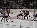 Albany Devils vs. Portland Pirates - December 28, 2013 (11622238083).jpg