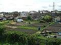Allotments on Ring Road near Dawson's Corner - geograph.org.uk - 412738.jpg