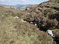 Allt na Caillich - geograph.org.uk - 1331773.jpg