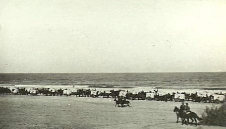 Ambulance convoy after the Battle of Magdhaba 1916 AWM photo B02487