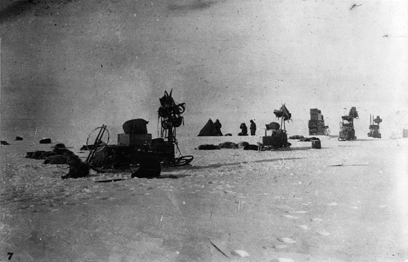 File:Amundsen's expedition at the South Pole - LOC 3b17881u.jpg