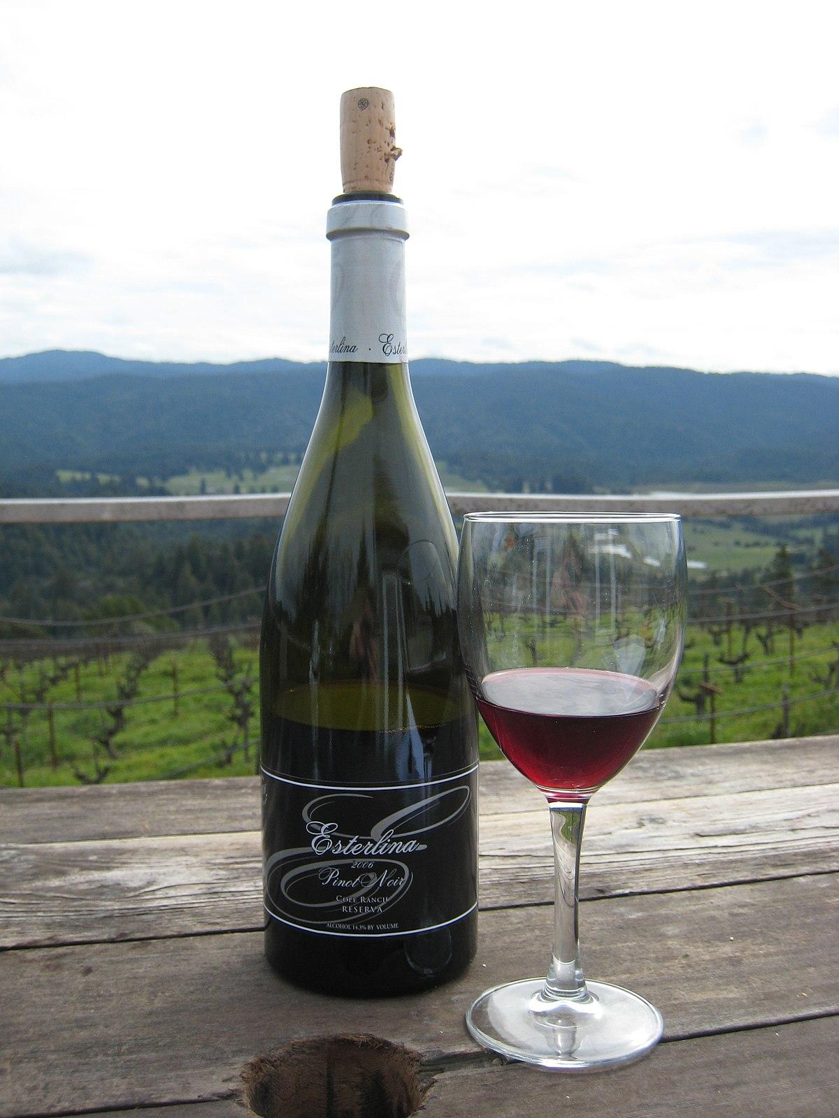 Pinot noir — Wikipédia