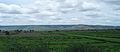 Andhra Pradesh - Landscapes from Andhra Pradesh, views from Indias South Central Railway (49).JPG