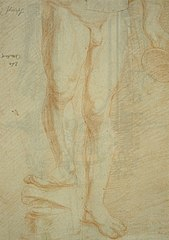 Nude study of an athlete (lower torso)