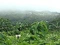 Aoloau Village .jpg