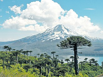 Conguillío National Park - Conguillio National Park from Sierra Nevada, with the lake and the Llaima Volcano background