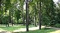 Arkhangelskoye, Moskovskaya oblast', Russia - panoramio (44).jpg