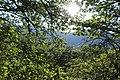 Arzakan-Meghradzor Sanctuary 024.jpg