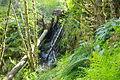 Atfalati Falls wide next to Ki-a-Kuts Falls.JPG