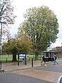 Autumn in Havant Park (1) - geograph.org.uk - 1572787.jpg