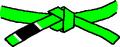BJJ Green Belt.PNG