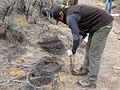 BLM Idaho and Volunteers Maintain Wilderness on NPLD 2014 (15290858080).jpg