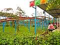 Baishamen Park - amusement park - roller coaster, kiddie - 01.jpg