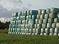 Bales in the afternoon - geograph.org.uk - 998646.jpg