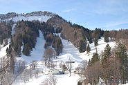 Balmberg schneeschuhlaufen seniorweb2009 023
