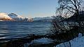 Balsfjorden coast.JPG