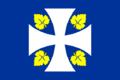 Bandera de Ribas de Sil.png
