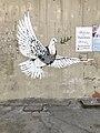 Banksy in Bethlehem, dove.jpg