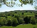 Barle valley - geograph.org.uk - 1364630.jpg