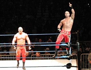 The Basham Brothers Professional wrestling tag team