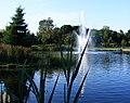 Bassin Parc Jarry.jpg